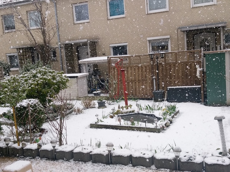 Schnee30.3.jpg